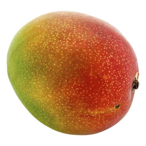 Mango Klass 1
