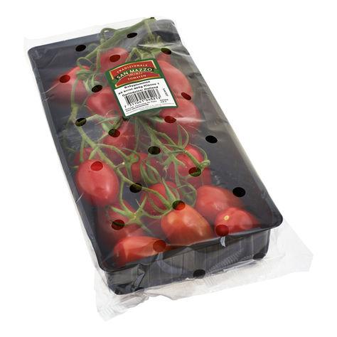 Tomater Babyplommon Kvist Klass 1