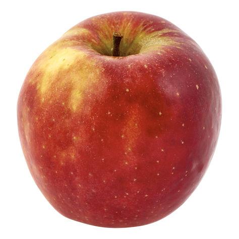 Äpple Jonagold Klass 1