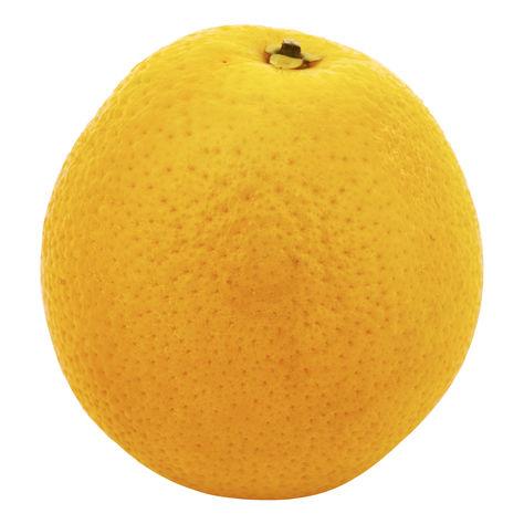 Apelsin Klass 1